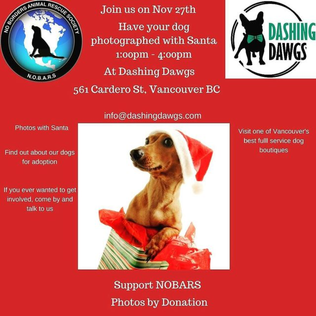 One week today everyone can bring their dogs down tohellip