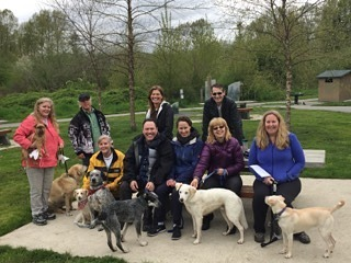 Free Dog Training for Vancouver Bring your Nobars dog andhellip