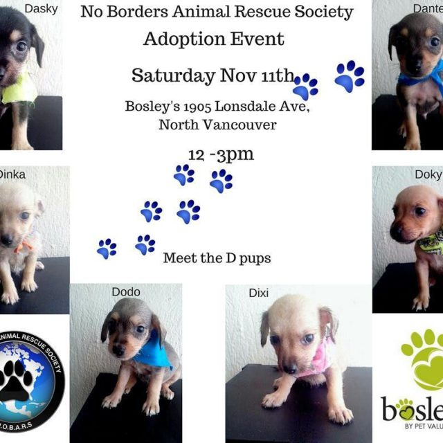 November 11th! We have a date set for our adoptionhellip